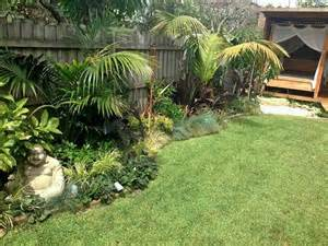 tropical garden design northern beaches sydney