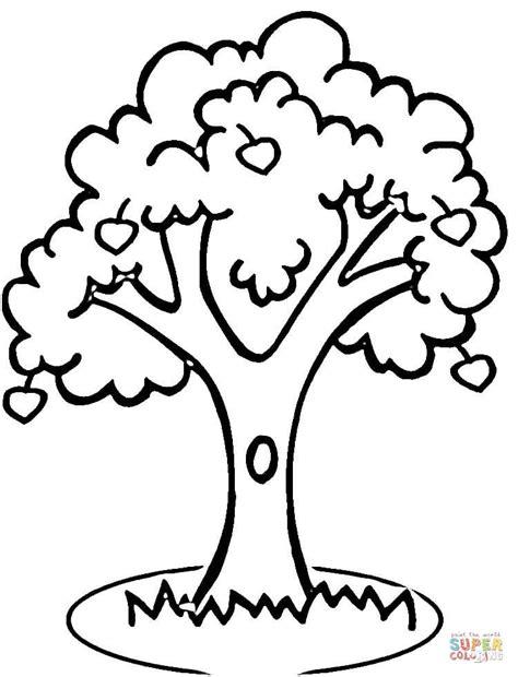 walnut tree coloring page ausmalbild apfelbaum ausmalbilder kostenlos zum ausdrucken
