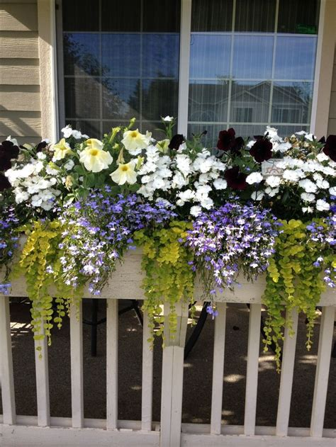 window box planters for railings front porch railing flower box garden outdoors