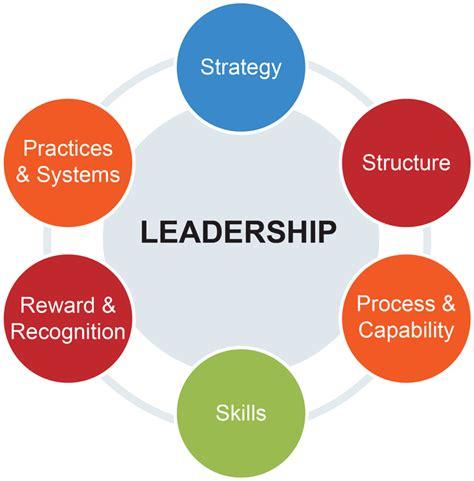 design of management system organizational design