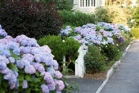 rose garden seattle
