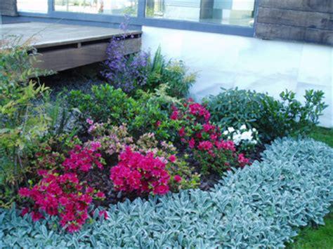 imagenes jardines secos plantas para jardines secos