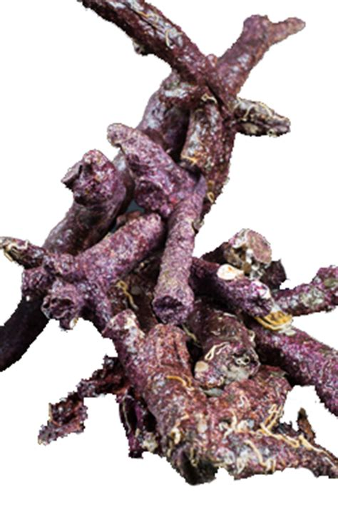 Aquascape World Product Line Real Reef Rock