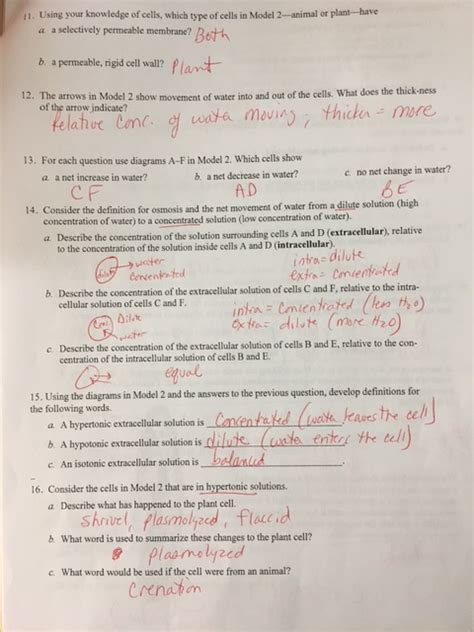 section 12 2 review human genetics anatomy coloring book chapter 7 answers pearson pice hall