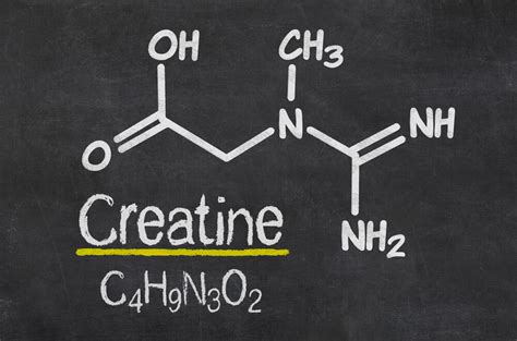creatine loading dose best creatine types of creatine gymjunkies