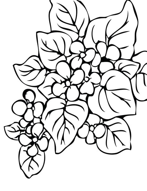 coloring pages of animals and flowers coloring page landscapes kids n fun desert animals and