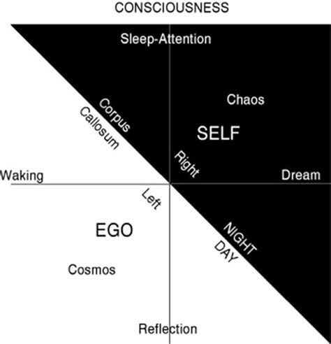 Self Ego brain and mind chance and choice