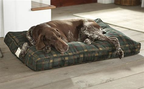 orvis dog beds large dog bed rectangle orvis dog s nest 174 orvis