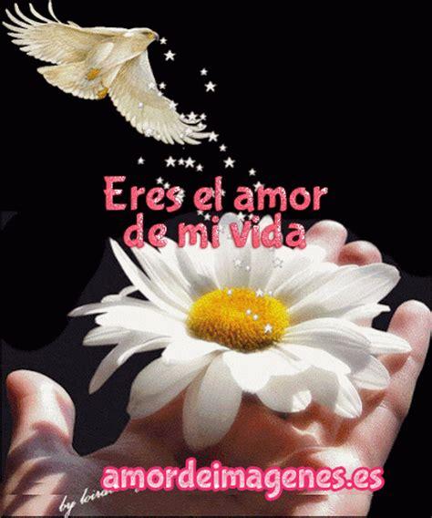 imagenes gif de amor y flores imgenes de flores las mejores imagenes de amor y holidays oo