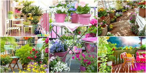fiori terrazzo fiori da balcone creare uno spazio green roba da donne