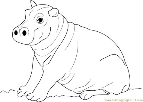 cute baby hippo pages coloring pages