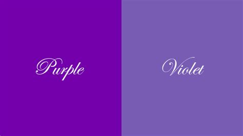 violet color difference between violet and purple