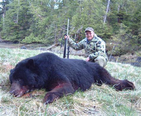 big black bear big black bear funny animal
