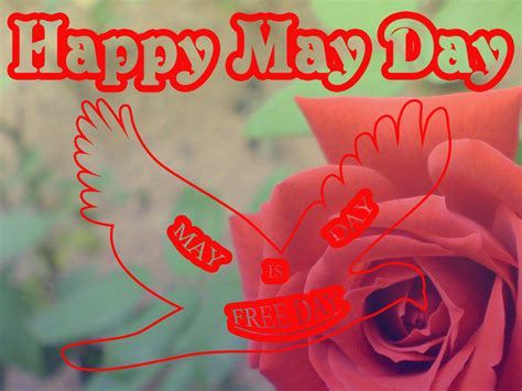 happy may day cards www pixshark com images galleries the greeting card for you happy may day