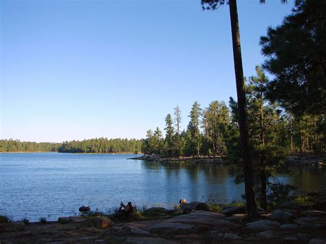 willow springs lake arizona apache sitgreaves national