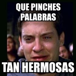 Pinches Memes - meme crying peter parker que pinches palabras tan