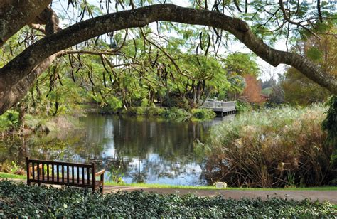 mounts botanical garden hosts horticulture events this may delray newspaper
