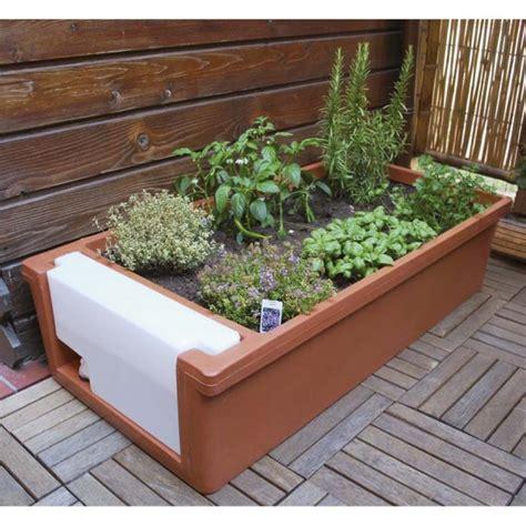 vasi per orto sul terrazzo mi faccio l orto sul balcone mollo store articoli