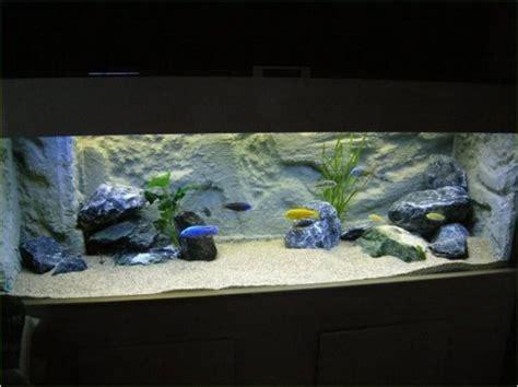 Aquarium Inrichting Ideeen by Het Inrichten Een Aquarium Voor Cichliden Uit Het