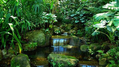 giardino tropicale penang tropical spice garden nella terra di sandokan