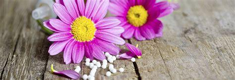 fiori di loro fiori di bach e loro indicazioni floriterapia di bach