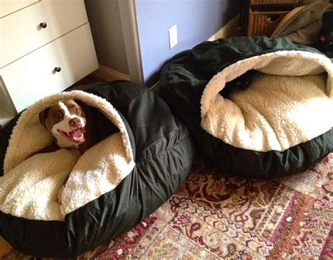 dog bed cave cra cra for cozy caves the unexamined dog