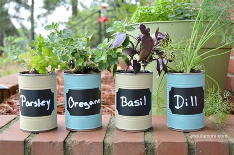 kitchen in a day diy kitchen herb garden gift idea about a