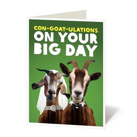 Girl And The Goat Gift Card - oxfam gifts gifts that give back