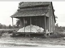 What Started the Arkansas Sharecropper Massacre of 1919? A ... Sharecropping House