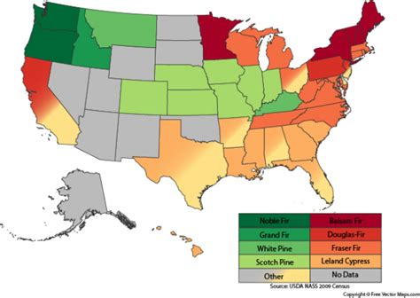 best 28 how many states grow christmas trees your