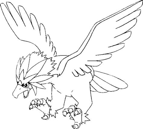 Pokemon Coloring Pages Braviary | coloring pages pokemon braviary drawings pokemon