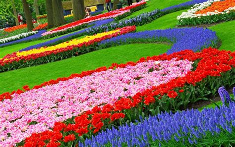 Most Beautiful Flower Garden The Most Beautiful Flower Gardens In The World Black Zoo Media