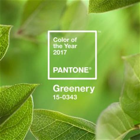 pantone 2017 color of the year greenery 15 0343 pantone colors fashion trendsetter