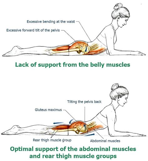 upper  stretches develop perfect posture  relieve