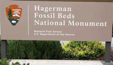 hagerman fossil beds national monument paleontology 101 the north american camel