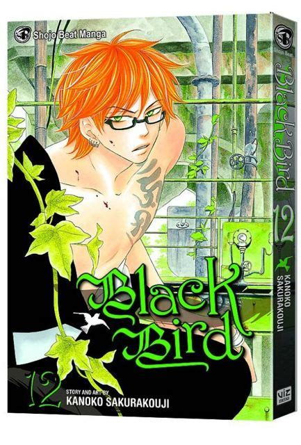Black Bird Vol 13 kanoko sakurakoji fresh comics
