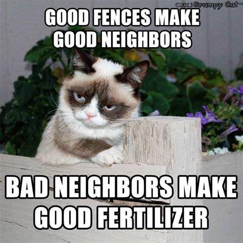 Good Meme Grumpy Cat - grumpy cat is coming you ve been warned chronicle
