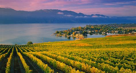 things to do kelowna bc destination bc official site