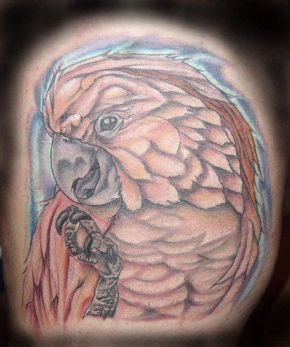 ultimate arts tattoo 34 best tattoos from ultimate arts images on