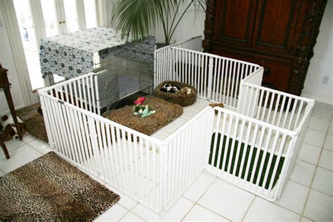 indoor puppy playpen indoor puppy pen rover company