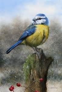 bird l 696 best images about painted birds on