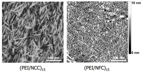 nanocellulose a cheap conductive stronger than kevlar nanocellulose a cheap conductive stronger than kevlar