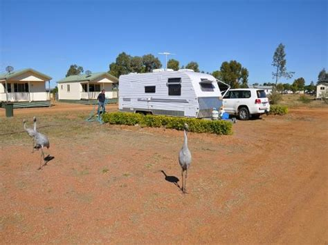 Longreach Accommodation Cabins by Longreach Tourist Park Updated 2017 Cground Reviews