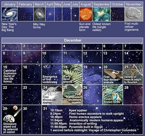 Cosmic Calendar The Cosmic Calendar About Infographics And Data