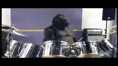 Wonderbra Recreates Cadbury Gorilla Advert For by Cadbury S Gorilla Advert