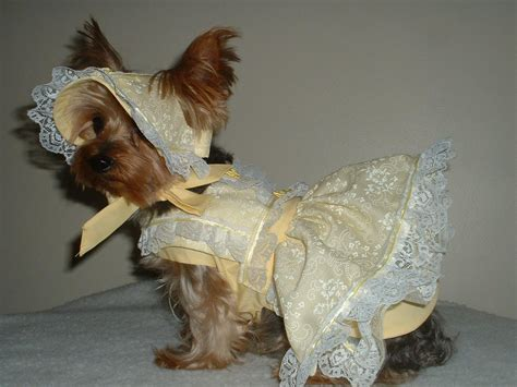 pattern clothes dog google image result for http www baxterboo com images