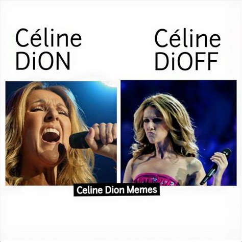 Celine Dion Meme - 248 best images about funny celine on pinterest