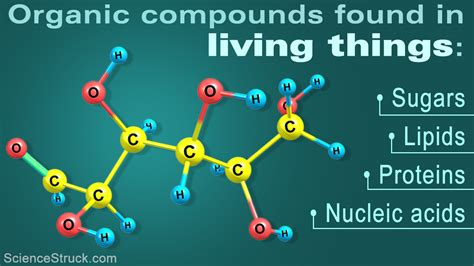 exle of organic compound organic compounds exles