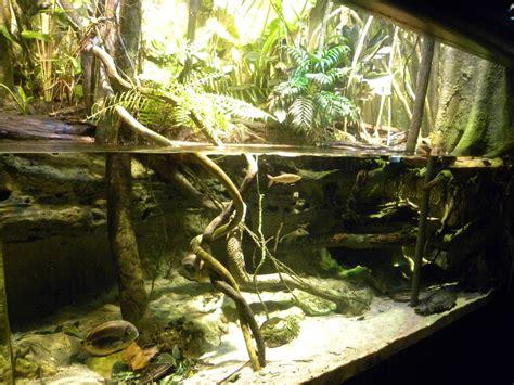 Aquarium Fish Model Cumi 13 Liter pier 3 river forest 187 national aquarium in baltimore gallery