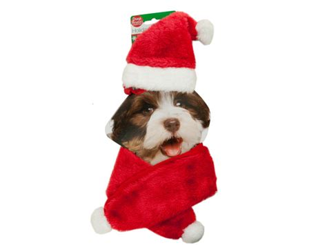 wholesale holiday pet santa hat scarf set bulk buys